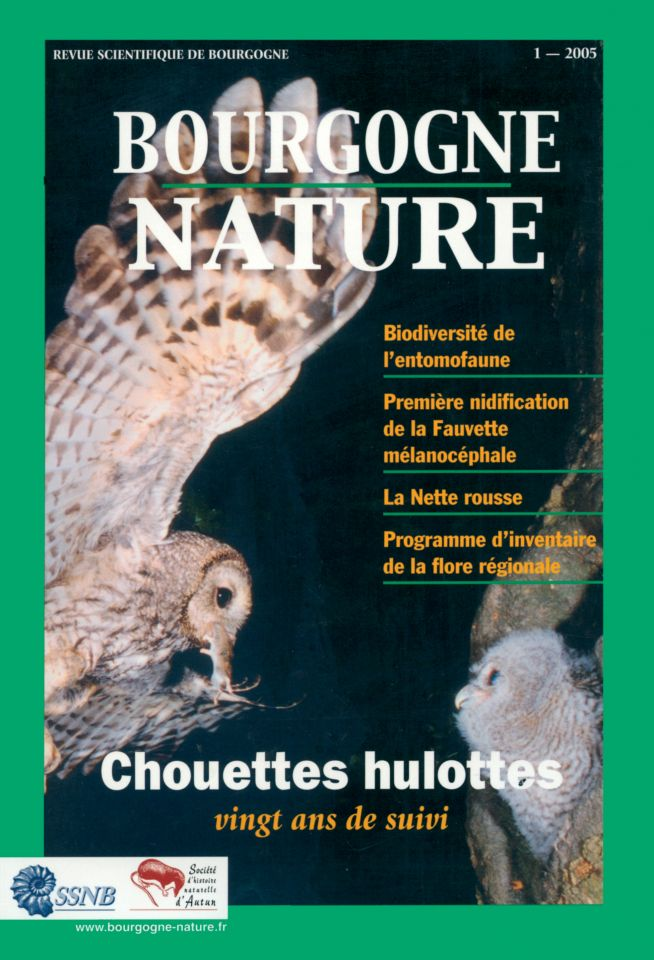 Chouettes hulottes
