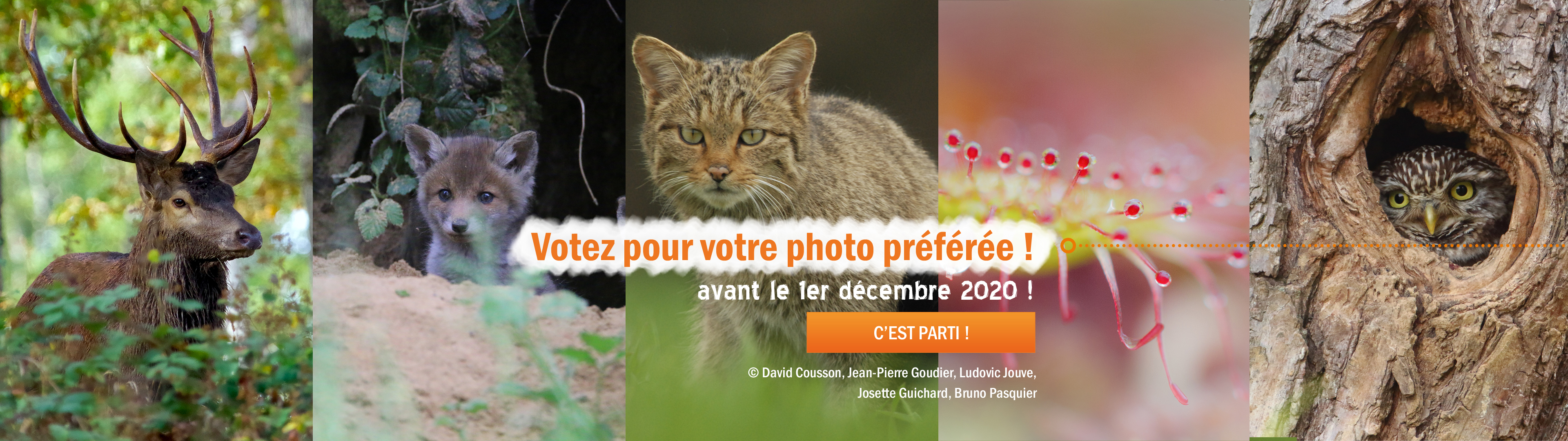 Vote image naturelle